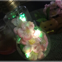 夜桜🌸/さくら🌸/雑貨/100均/ダイソー/インテリア/... 夜桜~🌸ライトアップ💡 お家夜桜も良い感…