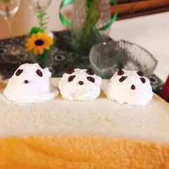 チョコ/ホイップクリーム/生クリーム/パンダ/誕生日ケーキ パンダ🐼 練習中~(*ˊᗜˋ)w  左と…