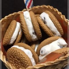 アイス/ビスケット/生クリーム/レーズンクッキーサンド 手作りアイス♪ レーズンクッキーサンド?…