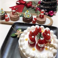 Xmasケーキ/いちごサンタ/ブッシュ・ド・ノエル/クリスマス/クリスマスツリー/おうちごはんクラブ/... 我が家にも クリスマスがやってきた~(*…