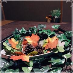 囲炉裏テーブル/囲炉裏/ローテーブル/リミアの冬暮らし/我が家のテーブル/リミアな暮らし/... 18年前に新築に合わせて購入したテーブル…(3枚目)