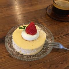 カフェおやつ/ロールケーキ/米粉/グルテンフリー/甘党大集合 今日のおやつ。 米粉のロールケーキ。 し…