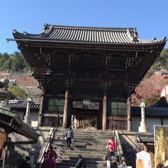 長谷寺/紅葉 今日はカミさんと娘と3人で奈良の長谷寺に…