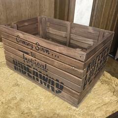 木箱/キャンドゥスノコ 久々に木箱作りました‼️キャンドゥのスノ…(2枚目)