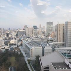 表参道/渋谷/会社から/LIMIA/空/LIMIAおでかけ部 もう夕方ですね!会社から大きい鳥みたいな…