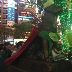 かわいい/奇跡/渋谷/サンタクロース/クリスマス/サンタ/... 一昨年ハチ公前に行ったら、ハチ公がサンタ…