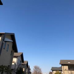 青空/空/LIMIAおでかけ部/おでかけ 今日の関東はキレイな青空で、お出かけ日和…