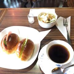 サラダ/ロールパン/サイフォン/コーヒー/モーニングセット/旗の台/... 旗の台の駅前で、レトロチックな喫茶店を発…