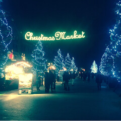 クリスマスマーケット/馬車道/みなとみらい/赤レンガ倉庫/フォロー大歓迎 赤レンガ倉庫では毎年クリスマスマーケット…