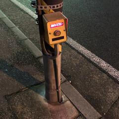 懐かしの/横断歩道/押しボタン式/昔 昨夜久しぶりに押しボタン式の横断歩道を見…