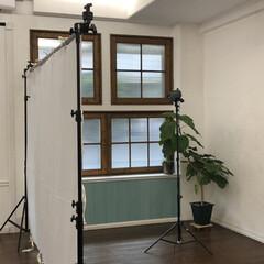 撮影/スタジオ/LIMIA/ファッション/フォロー大歓迎 ただいまファッション撮影中です!LIMI…