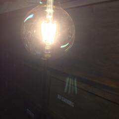 エジソン電球LED/LED/ガレージ/照明/駐車場/物置/... ガレージにニトリのLEDフィラメント電球…(3枚目)