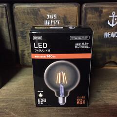 エジソン電球LED/LED/ガレージ/照明/駐車場/物置/... ガレージにニトリのLEDフィラメント電球…(2枚目)