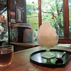 かき氷/フード/おでかけ 夏期限定販売の氷甘酒。神田明神のすぐそば…