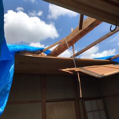 悪徳業者に注意/災害救助/室内片付け作業/屋根飛ばされた/台風被害/リフォーム/... 台風の影響で屋根飛ばされた場合は至急 室…