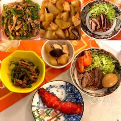 ごはん/おうちごはんクラブ 今日の晩御飯🍛大根とこんにゃく、鶏肉の煮…(1枚目)