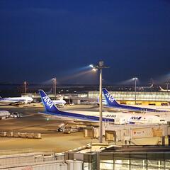 飛行機/夜景/景色/羽田空港 夜の羽田空港へ行ってきました。展望デッキ…