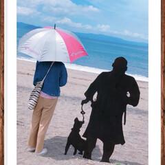 砂浜/海/西郷どん 西郷どんと私の2ショット…♪♪♪  鹿…