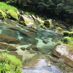 鹿児島/雄川の滝/滝/マイナスイオン/癒し 西郷どんのオープニングで流れている…鹿児…(5枚目)