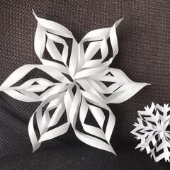 冬/紙/結晶/インテリア/住まい/ハンドメイド コピー用紙2枚 切り貼り 雪の結晶 なか…