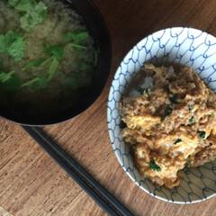 親子丼/お弁当/わたしのごはん そぼろ丼弁当  スナップえんどうにまつの…(2枚目)