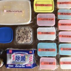 クール便/差し入れ 冷凍 ・トマトチーズハンバーグ2 ・フラ…