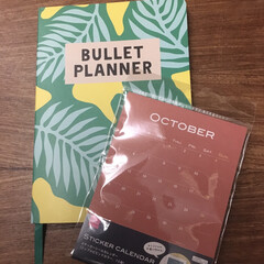 fling tiger/DAISO fling tigerで買ったノートにd…(2枚目)