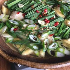 もつ鍋/わたしのごはん/フード 鰹昆布出汁に酒、薄口、醤油、塩、味醂。 …