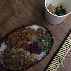 お弁当 豚の生姜焼き弁当🍱  坦々セロリ、ルーロ…(1枚目)