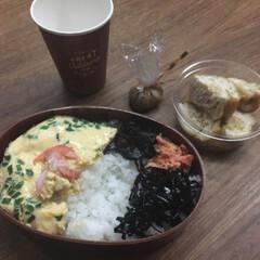 平成弁当/お弁当/みんなのお弁当 平成31年のお弁当  2019年初のお弁…(4枚目)