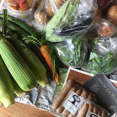 お野菜 母のお友達から送られてきたお野菜。  毎…