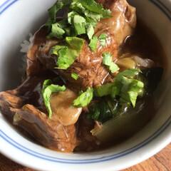 牛バラ肉/おうちごはん 牛バラ肉をフライパンで焼いてネギの青い部…