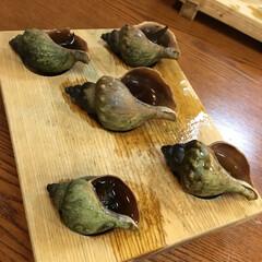 釧路/ツブ/グルメ 美味しかった😆