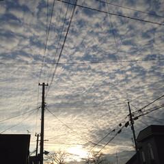 良い天気/6月/夕方/うろこ雲 もう6月 早いなぁ〜💦 今月も宜しくお願…