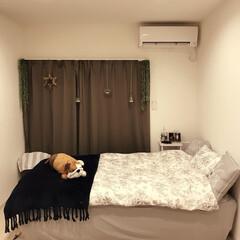 ベッドカバー/ベッドルーム/フランフラン/ニトリ/フォロー大歓迎/はじめてフォト投稿 ニトリベッドカバーとフランフランのブラン…