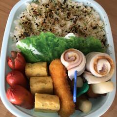 エビ寄せフライ/肉巻きポテト/ハムちくわ/赤ウインナー/玉子焼き 本日のお弁当🍱