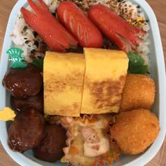 コーンクリームコロッケ/えびグラタン/ミートボール/赤ウインナー/卵焼き 今日のお弁当🍱