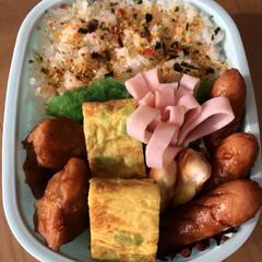ウインナー焼肉味/唐揚げ/チーズかまぼこ/ハム/枝豆卵焼き 今日のお弁当🍱