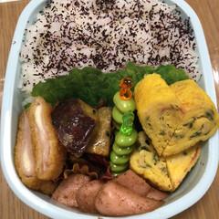 サツマイモ/枝豆/カニカマしそ卵焼き/チーズハムカツ/魚肉ソーセージマヨネーズ和え 今日のお弁当🍱