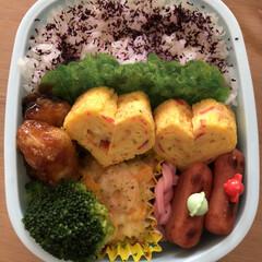 イカ天/カニカマ卵焼き/チビウインナー/かまぼこ/グラタン/🍘 今日のお弁当🍱