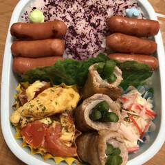 ポテトサラダ/アスパラ豚肉巻き/チビウインナー/トマトと卵炒め 今日のお弁当🍱