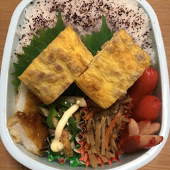 挽肉卵焼き/ちくわピーマン炒め/イカ天/きんぴらごぼう/赤ウインナー 今日のお弁当🍱