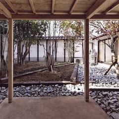 庭/屋根/石目柄、和風/モダン/ガーデン/ガーデニング 離れに繋がる庭。