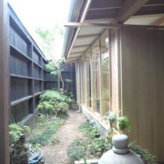 増築/通路/路地/坪庭 増築後通路の坪庭