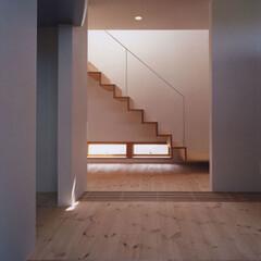 木質/玄関/シンプル/階段/スチール階段 玄関