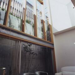 地下室/木造/木質/居間 居間