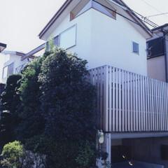 地下室/木造/木質 I House
