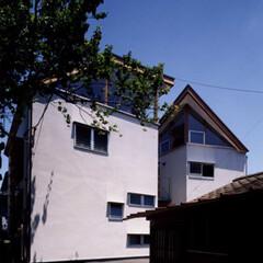 シンプル/木質/二世帯/二世帯住宅/中庭 二世帯住宅 姉妹二人で暮らすための二世帯…