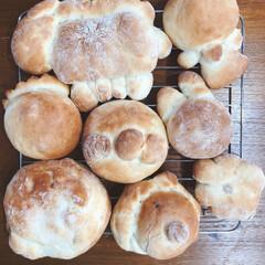 手づくりパン/リミアな暮らし 6歳の息子が初めて作ったパンです!中身は…(2枚目)