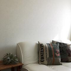 子ども部屋/息子の部屋/クッションシート/かべがみ道場/壁紙/LIMIAインテリア部/... 次男の殺風景な部屋をリメイク。 壁面にク…(2枚目)